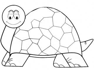 Tartaruga-Galpagos-2